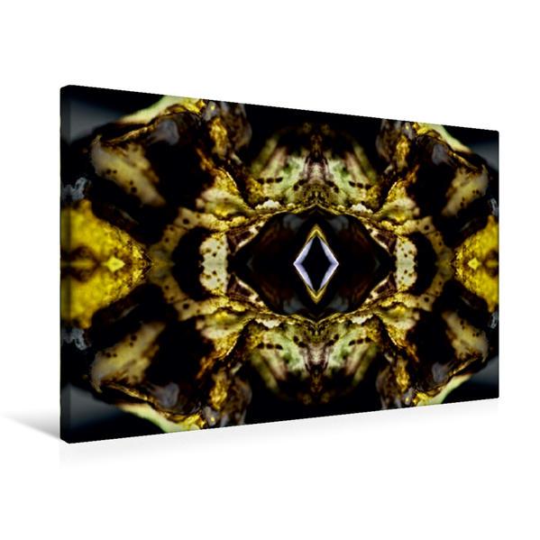 Premium Textil-Leinwand 75 cm x 50 cm quer, Touho | Wandbild, Bild auf Keilrahmen, Fertigbild auf echter Leinwand, Leinwanddruck - Coverbild