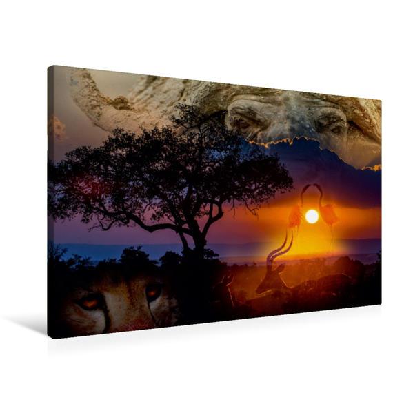 Premium Textil-Leinwand 90 cm x 60 cm quer, Ein Motiv aus dem Kalender Emotionale Momente: African Dreams | Wandbild, Bild auf Keilrahmen, Fertigbild auf echter Leinwand, Leinwanddruck - Coverbild