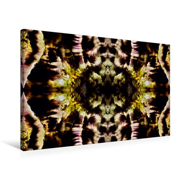 Premium Textil-Leinwand 75 cm x 50 cm quer, Bourake | Wandbild, Bild auf Keilrahmen, Fertigbild auf echter Leinwand, Leinwanddruck - Coverbild