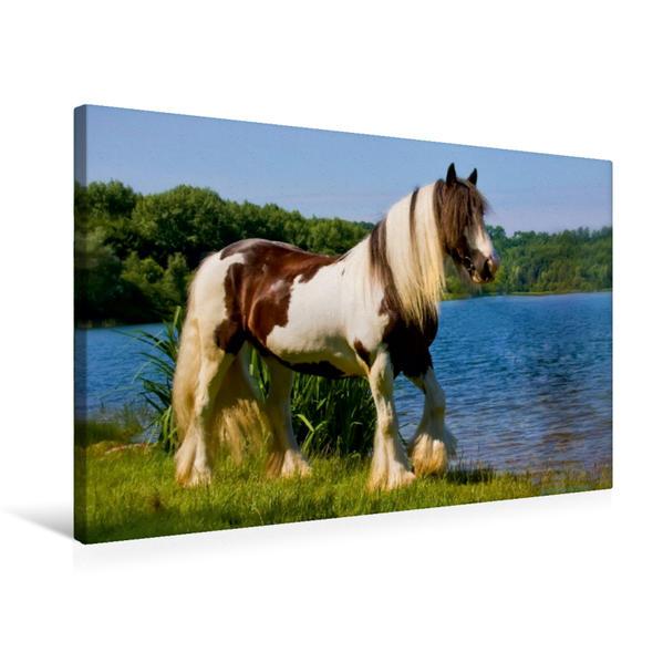 Premium Textil-Leinwand 75 cm x 50 cm quer, Ein Motiv aus dem Kalender Gypsy Horses | Wandbild, Bild auf Keilrahmen, Fertigbild auf echter Leinwand, Leinwanddruck - Coverbild