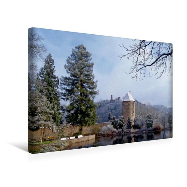 Premium Textil-Leinwand 45 cm x 30 cm quer, Winterhauch am Schlossteich in Weinheim an der Bergstraße | Wandbild, Bild auf Keilrahmen, Fertigbild auf echter Leinwand, Leinwanddruck - Coverbild