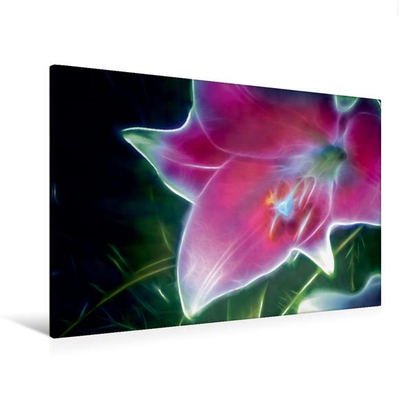 Premium Textil-Leinwand 120 cm x 80 cm quer, Ein Motiv aus dem Kalender Floral mit Charme   Wandbild, Bild auf Keilrahmen, Fertigbild auf echter Leinwand, Leinwanddruck - Coverbild