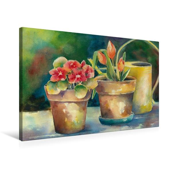 Premium Textil-Leinwand 75 cm x 50 cm quer, Blumentöpfe | Wandbild, Bild auf Keilrahmen, Fertigbild auf echter Leinwand, Leinwanddruck - Coverbild