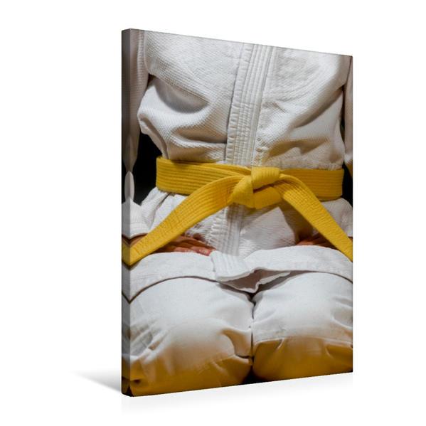 Premium Textil-Leinwand 50 cm x 75 cm hoch, Ein Motiv aus dem Kalender Kampfkunst   Wandbild, Bild auf Keilrahmen, Fertigbild auf echter Leinwand, Leinwanddruck - Coverbild