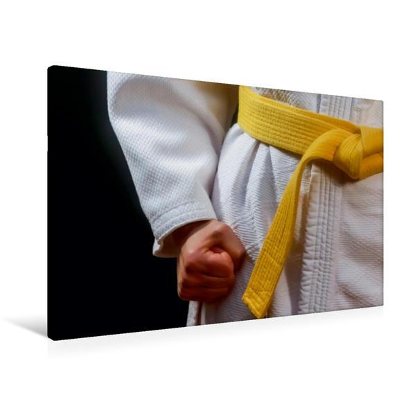 Premium Textil-Leinwand 90 cm x 60 cm quer, Ein Motiv aus dem Kalender Kampfsport | Wandbild, Bild auf Keilrahmen, Fertigbild auf echter Leinwand, Leinwanddruck - Coverbild