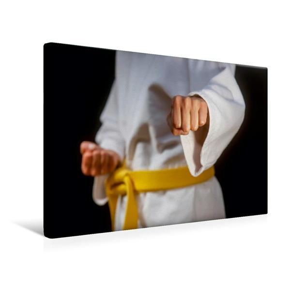 Premium Textil-Leinwand 45 cm x 30 cm quer, Ein Motiv aus dem Kalender Kampfsport | Wandbild, Bild auf Keilrahmen, Fertigbild auf echter Leinwand, Leinwanddruck - Coverbild
