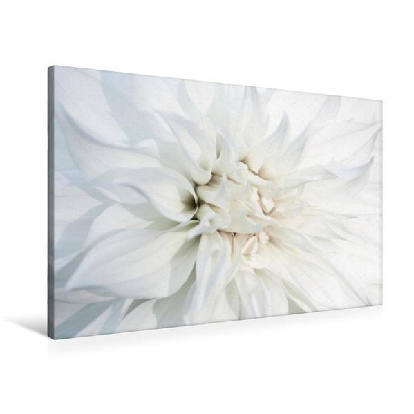 Premium Textil-Leinwand 90 cm x 60 cm quer, Ein Motiv aus dem Kalender Feines Weiß | Wandbild, Bild auf Keilrahmen, Fertigbild auf echter Leinwand, Leinwanddruck - Coverbild