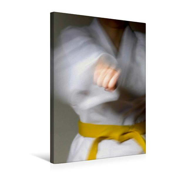 Premium Textil-Leinwand 50 cm x 75 cm hoch, Ein Motiv aus dem Kalender Kampfkunst | Wandbild, Bild auf Keilrahmen, Fertigbild auf echter Leinwand, Leinwanddruck - Coverbild