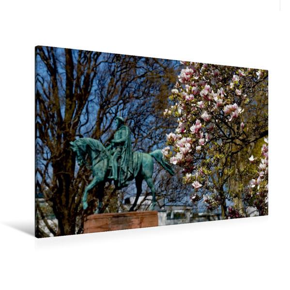 Premium Textil-Leinwand 120 cm x 80 cm quer, Ein Motiv aus dem Kalender Naturmomente: Die Magnolienblüte | Wandbild, Bild auf Keilrahmen, Fertigbild auf echter Leinwand, Leinwanddruck - Coverbild