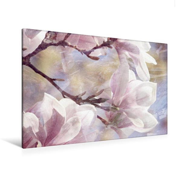 Premium Textil-Leinwand 120 cm x 80 cm quer, Magnolienstillleben | Wandbild, Bild auf Keilrahmen, Fertigbild auf echter Leinwand, Leinwanddruck - Coverbild
