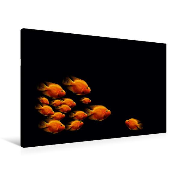 Premium Textil-Leinwand 90 cm x 60 cm quer, Der Fischschwarm | Wandbild, Bild auf Keilrahmen, Fertigbild auf echter Leinwand, Leinwanddruck - Coverbild