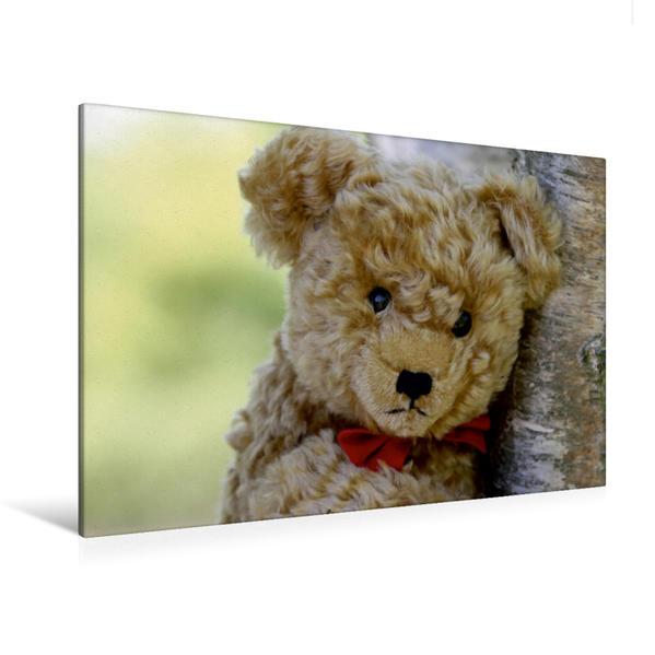 Premium Textil-Leinwand 120 cm x 80 cm quer, Ein Motiv aus dem Kalender Teddy unterwegs   Wandbild, Bild auf Keilrahmen, Fertigbild auf echter Leinwand, Leinwanddruck - Coverbild