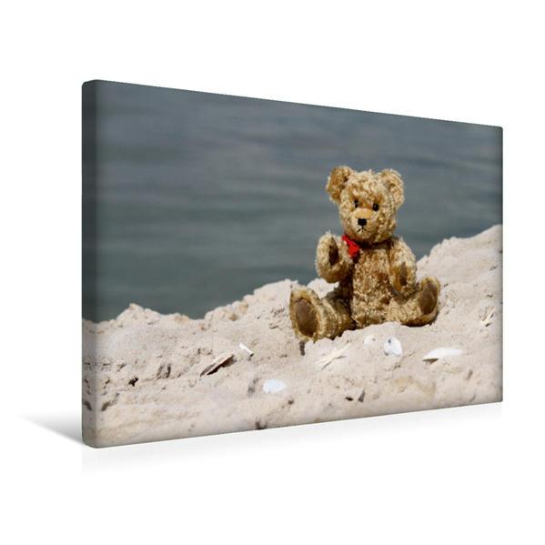 Premium Textil-Leinwand 45 cm x 30 cm quer, Ein Motiv aus dem Kalender Teddy unterwegs | Wandbild, Bild auf Keilrahmen, Fertigbild auf echter Leinwand, Leinwanddruck - Coverbild