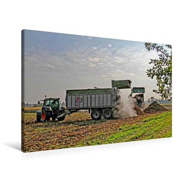 Premium Textil-Leinwand 90 cm x 60 cm quer, Gärreste | Wandbild, Bild auf Keilrahmen, Fertigbild auf echter Leinwand, Leinwanddruck - Coverbild