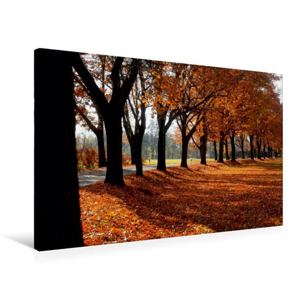 Premium Textil-Leinwand 75 cm x 50 cm quer, Schöne Allee im Spreewald   Wandbild, Bild auf Keilrahmen, Fertigbild auf echter Leinwand, Leinwanddruck - Coverbild