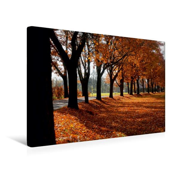 Premium Textil-Leinwand 45 cm x 30 cm quer, Schöne Allee im Spreewald   Wandbild, Bild auf Keilrahmen, Fertigbild auf echter Leinwand, Leinwanddruck - Coverbild