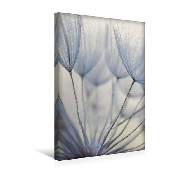 Premium Textil-Leinwand 30 cm x 45 cm hoch, Zarte Sommerpflanze | Wandbild, Bild auf Keilrahmen, Fertigbild auf echter Leinwand, Leinwanddruck - Coverbild