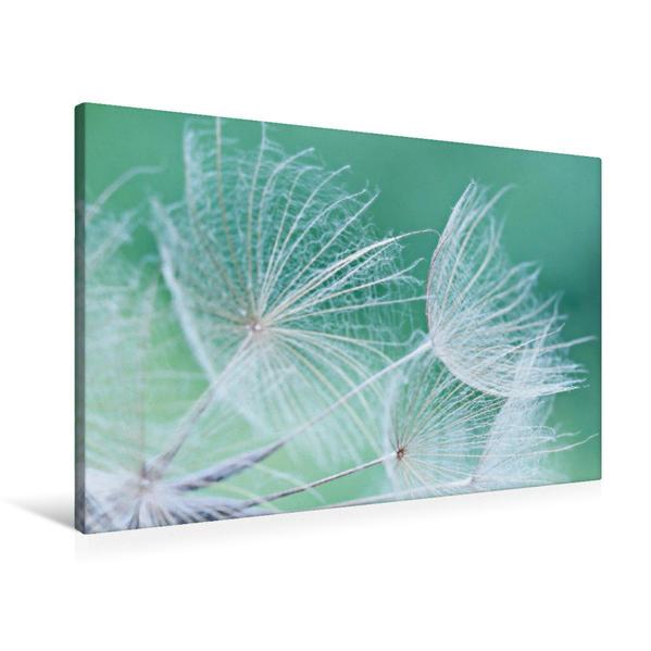 Premium Textil-Leinwand 90 cm x 60 cm quer, Filigranes Sommermotiv | Wandbild, Bild auf Keilrahmen, Fertigbild auf echter Leinwand, Leinwanddruck - Coverbild