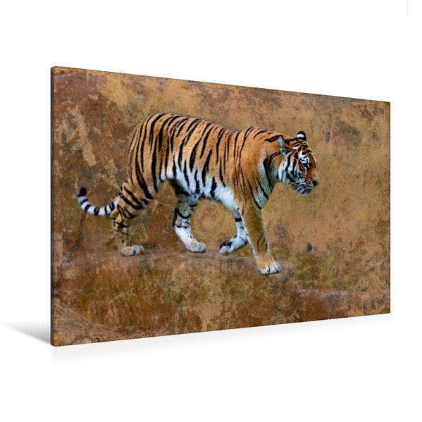 Premium Textil-Leinwand 120 cm x 80 cm quer, Sibirischer Tiger   Wandbild, Bild auf Keilrahmen, Fertigbild auf echter Leinwand, Leinwanddruck - Coverbild