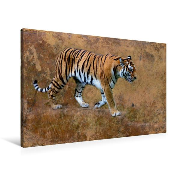 Premium Textil-Leinwand 90 cm x 60 cm quer, Sibirischer Tiger | Wandbild, Bild auf Keilrahmen, Fertigbild auf echter Leinwand, Leinwanddruck - Coverbild