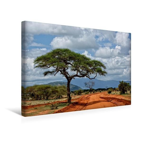 Premium Textil-Leinwand 45 cm x 30 cm quer, Tsavo Ost Nationalpark | Wandbild, Bild auf Keilrahmen, Fertigbild auf echter Leinwand, Leinwanddruck - Coverbild