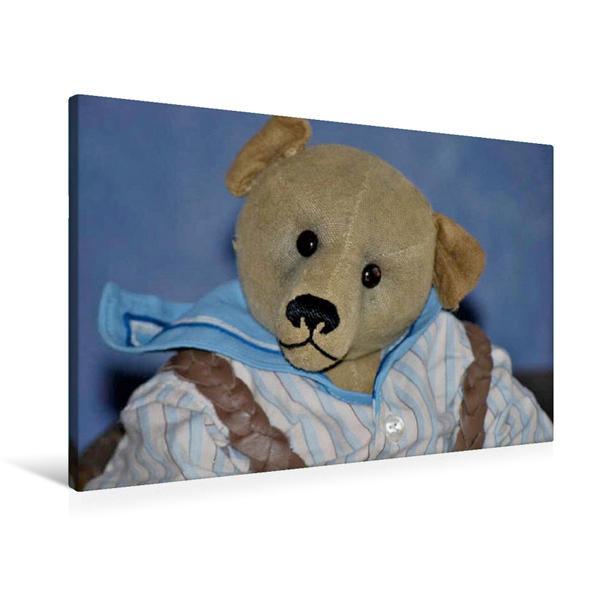Premium Textil-Leinwand 90 cm x 60 cm quer, Robin der Bär als Leinenbär | Wandbild, Bild auf Keilrahmen, Fertigbild auf echter Leinwand, Leinwanddruck - Coverbild
