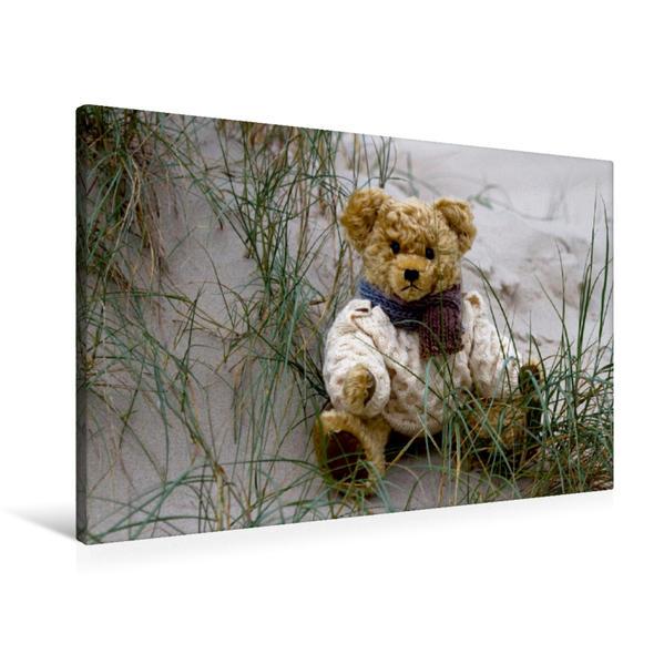 Premium Textil-Leinwand 90 cm x 60 cm quer, Ein Motiv aus dem Kalender Teddy Sammy macht Urlaub | Wandbild, Bild auf Keilrahmen, Fertigbild auf echter Leinwand, Leinwanddruck - Coverbild