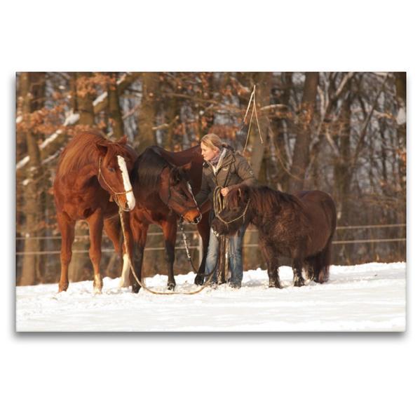 Premium Textil-Leinwand 120 cm x 80 cm quer, Claudia Miller und ihre drei Freunde auf der Winterweide | Wandbild, Bild auf Keilrahmen, Fertigbild auf echter Leinwand, Leinwanddruck - Coverbild