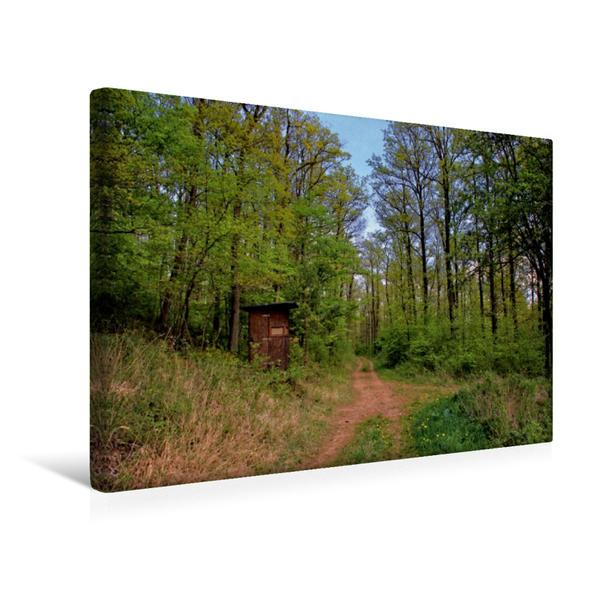 Premium Textil-Leinwand 45 cm x 30 cm quer, Ansitz im Eifelwald | Wandbild, Bild auf Keilrahmen, Fertigbild auf echter Leinwand, Leinwanddruck - Coverbild
