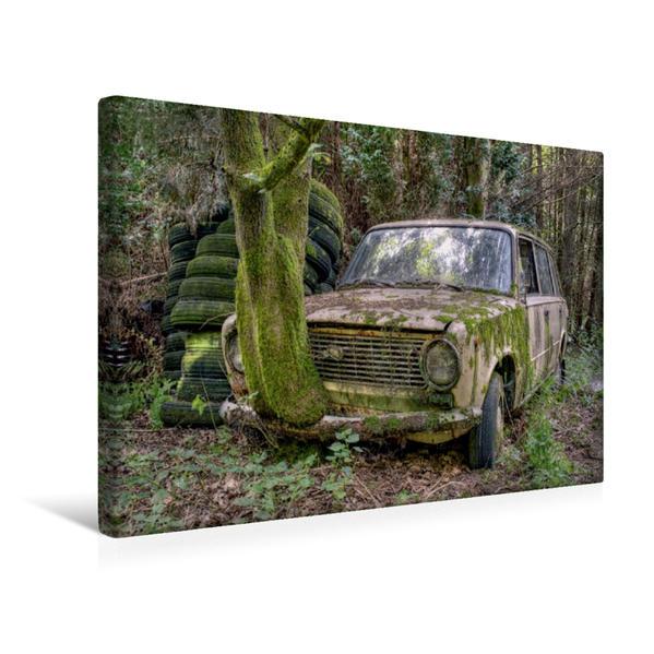 Premium Textil-Leinwand 45 cm x 30 cm quer, Rostlaube - Lada   Wandbild, Bild auf Keilrahmen, Fertigbild auf echter Leinwand, Leinwanddruck - Coverbild