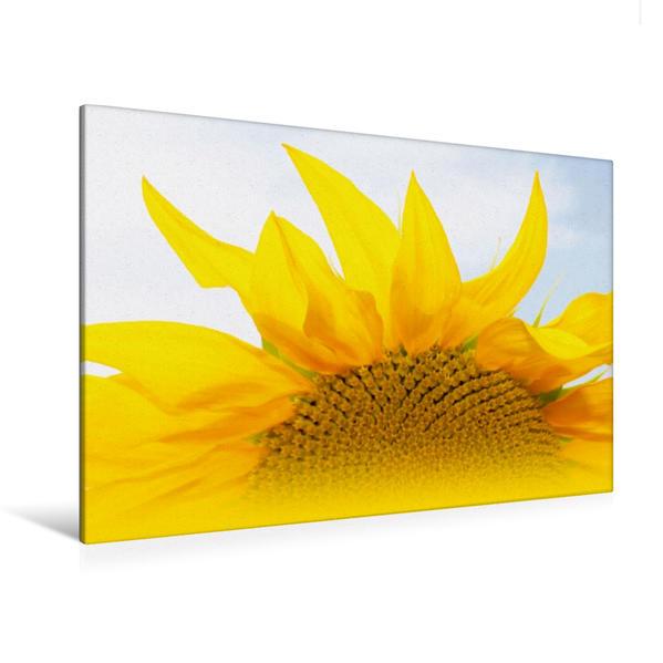 Premium Textil-Leinwand 120 cm x 80 cm quer, sunshine o fmy life   Wandbild, Bild auf Keilrahmen, Fertigbild auf echter Leinwand, Leinwanddruck - Coverbild