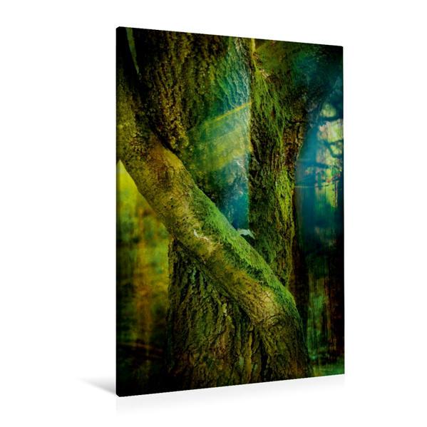 Premium Textil-Leinwand 80 cm x 120 cm  hoch, Ein Motiv aus dem Kalender Fantasiebilder   Wandbild, Bild auf Keilrahmen, Fertigbild auf echter Leinwand, Leinwanddruck - Coverbild