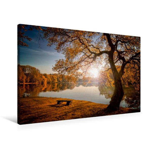 Premium Textil-Leinwand 90 cm x 60 cm quer, Herbstlicht | Wandbild, Bild auf Keilrahmen, Fertigbild auf echter Leinwand, Leinwanddruck - Coverbild