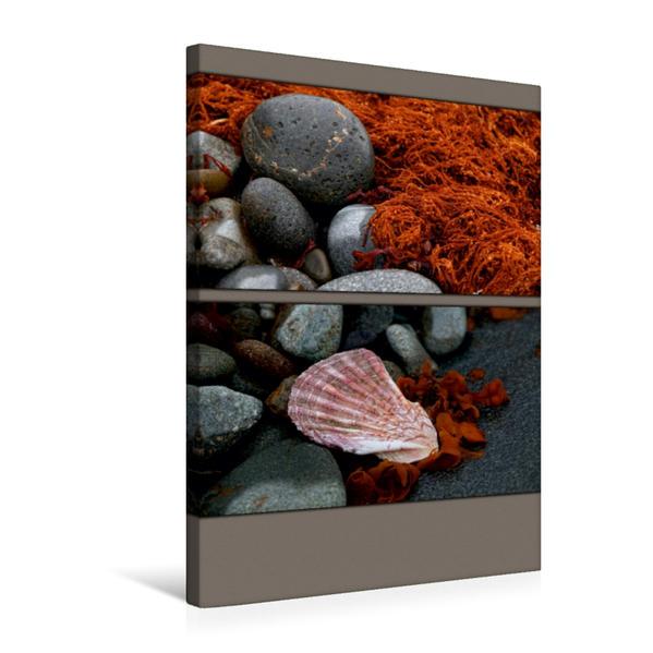 Premium Textil-Leinwand 50 cm x 75 cm hoch, Steine und Muscheln am Strand | Wandbild, Bild auf Keilrahmen, Fertigbild auf echter Leinwand, Leinwanddruck - Coverbild