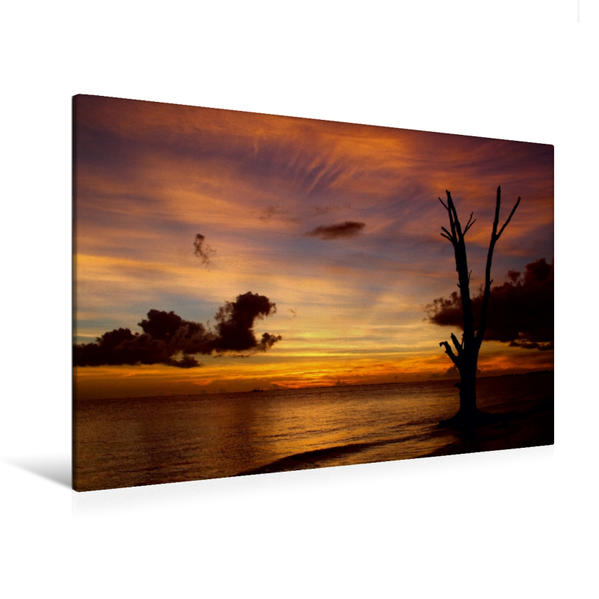 Premium Textil-Leinwand 120 cm x 80 cm quer, Ein Motiv aus dem Kalender Florida Impressionen | Wandbild, Bild auf Keilrahmen, Fertigbild auf echter Leinwand, Leinwanddruck - Coverbild