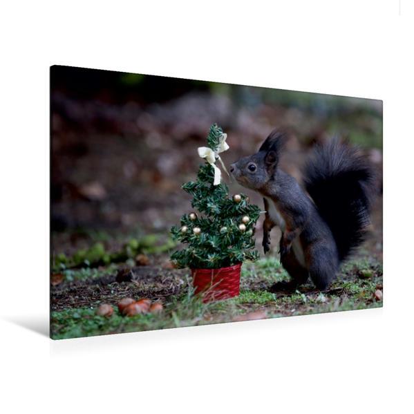 Premium Textil-Leinwand 120 cm x 80 cm quer, Oh ein Weihnachtsbäumchen nur für mich...   Wandbild, Bild auf Keilrahmen, Fertigbild auf echter Leinwand, Leinwanddruck - Coverbild