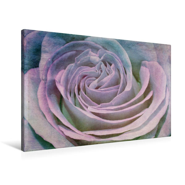 Premium Textil-Leinwand 90 cm x 60 cm quer, Romantische Rose - Shabby Chic Style   Wandbild, Bild auf Keilrahmen, Fertigbild auf echter Leinwand, Leinwanddruck - Coverbild
