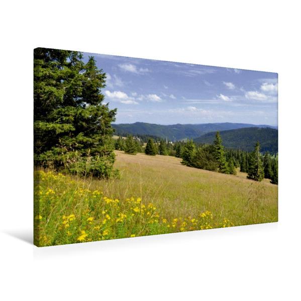 Premium Textil-Leinwand 75 cm x 50 cm quer, Schwarzwald | Wandbild, Bild auf Keilrahmen, Fertigbild auf echter Leinwand, Leinwanddruck - Coverbild