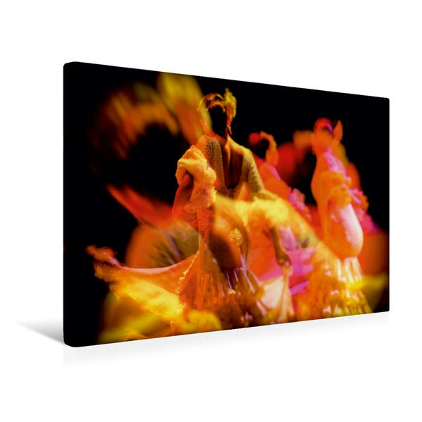 Premium Textil-Leinwand 45 cm x 30 cm quer, Ein Motiv aus dem Kalender Flamenco - Tanz der Leidenschaft | Wandbild, Bild auf Keilrahmen, Fertigbild auf echter Leinwand, Leinwanddruck - Coverbild