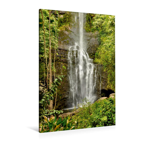 Premium Textil-Leinwand 80 cm x 120 cm  hoch, Twin Falls, Maui   Wandbild, Bild auf Keilrahmen, Fertigbild auf echter Leinwand, Leinwanddruck - Coverbild