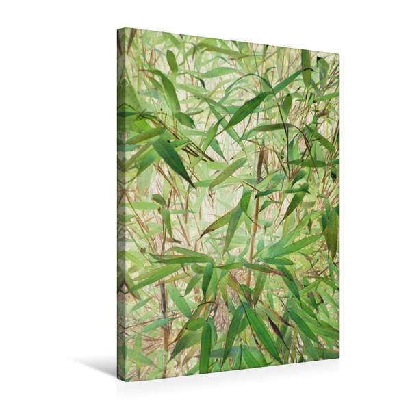 Premium Textil-Leinwand 50 cm x 75 cm hoch, Belebender Bambus | Wandbild, Bild auf Keilrahmen, Fertigbild auf echter Leinwand, Leinwanddruck - Coverbild