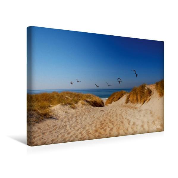 Premium Textil-Leinwand 45 cm x 30 cm quer, Dünen an der Nordsee | Wandbild, Bild auf Keilrahmen, Fertigbild auf echter Leinwand, Leinwanddruck - Coverbild