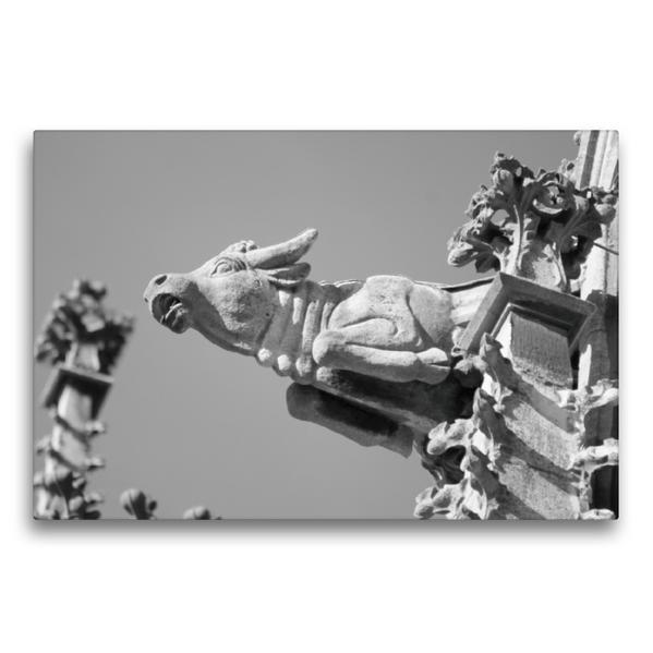 Premium Textil-Leinwand 75 cm x 50 cm quer, Wasserspeier Stier auf dem Ulmer Münster | Wandbild, Bild auf Keilrahmen, Fertigbild auf echter Leinwand, Leinwanddruck - Coverbild