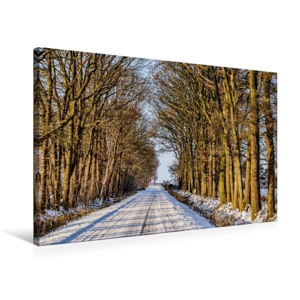 Premium Textil-Leinwand 75 cm x 50 cm quer, Allee bei Hamminkeln   Wandbild, Bild auf Keilrahmen, Fertigbild auf echter Leinwand, Leinwanddruck - Coverbild