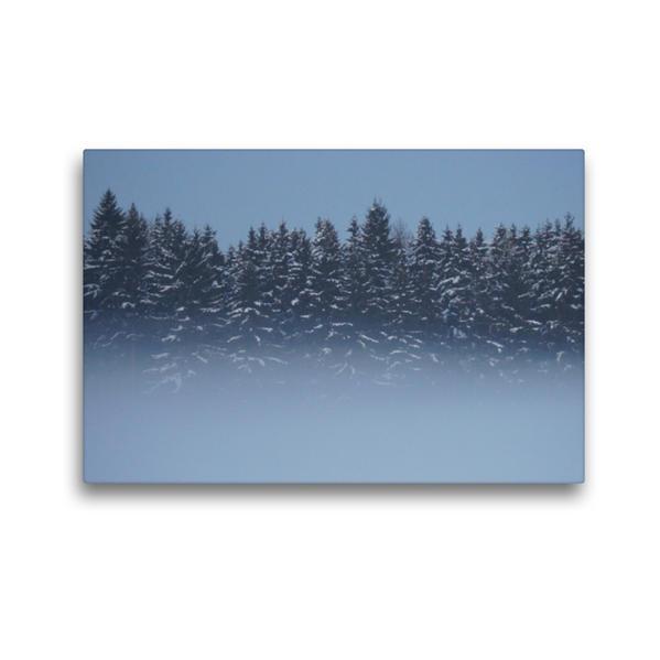 Premium Textil-Leinwand 45 cm x 30 cm quer, Wald im Nebel | Wandbild, Bild auf Keilrahmen, Fertigbild auf echter Leinwand, Leinwanddruck - Coverbild