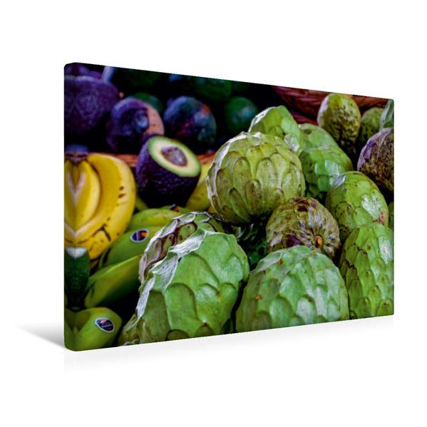 Premium Textil-Leinwand 45 cm x 30 cm quer, Anona - Avocado - Banane | Wandbild, Bild auf Keilrahmen, Fertigbild auf echter Leinwand, Leinwanddruck - Coverbild