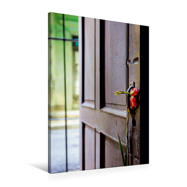 Premium Textil-Leinwand 60 cm x 90 cm hoch, Blume an der Tür einer Casa Particulare   Wandbild, Bild auf Keilrahmen, Fertigbild auf echter Leinwand, Leinwanddruck - Coverbild