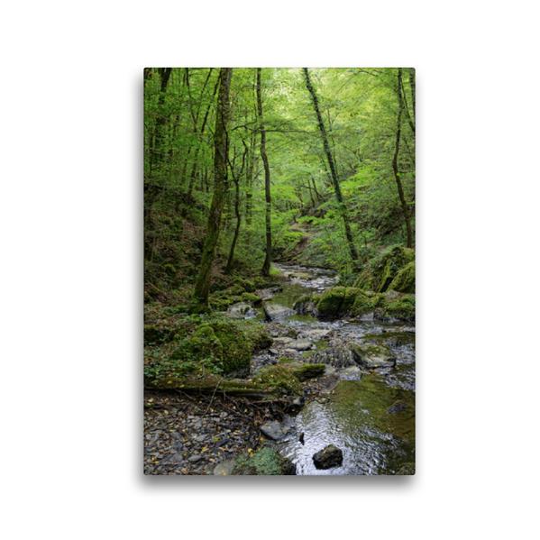 Premium Textil-Leinwand 30 cm x 45 cm hoch, Ehrbach in der Ehrbachklamm im Hunsrück   Wandbild, Bild auf Keilrahmen, Fertigbild auf echter Leinwand, Leinwanddruck - Coverbild
