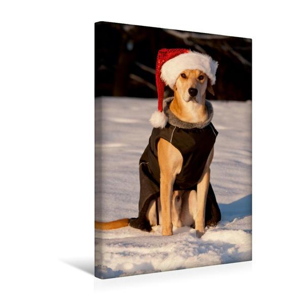 Premium Textil-Leinwand 30 cm x 45 cm hoch, Frohe Weihnachten! | Wandbild, Bild auf Keilrahmen, Fertigbild auf echter Leinwand, Leinwanddruck - Coverbild