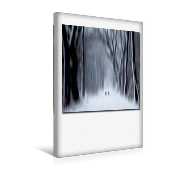 Premium Textil-Leinwand 30 cm x 45 cm hoch, Ein Motiv aus dem Kalender Transzendent | Wandbild, Bild auf Keilrahmen, Fertigbild auf echter Leinwand, Leinwanddruck - Coverbild
